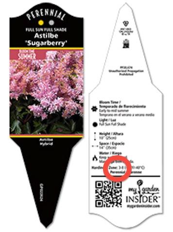 etiquette plante