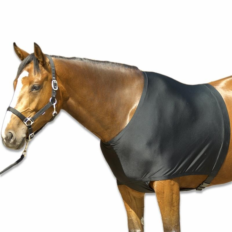 protection epaule cheval