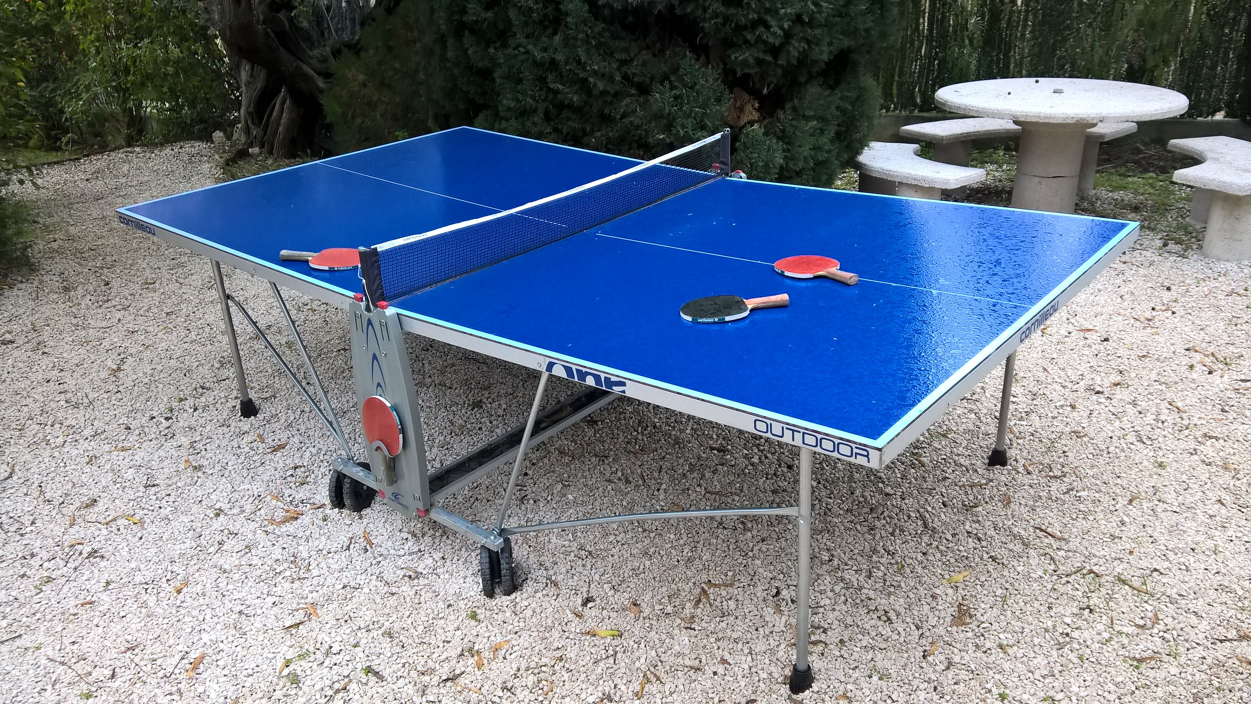 table de ping pong d occasion