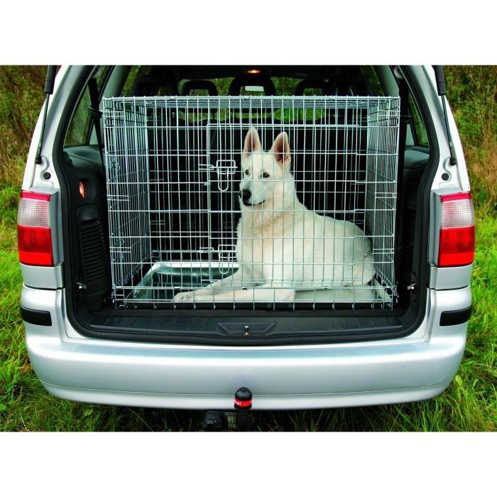 transport de chien