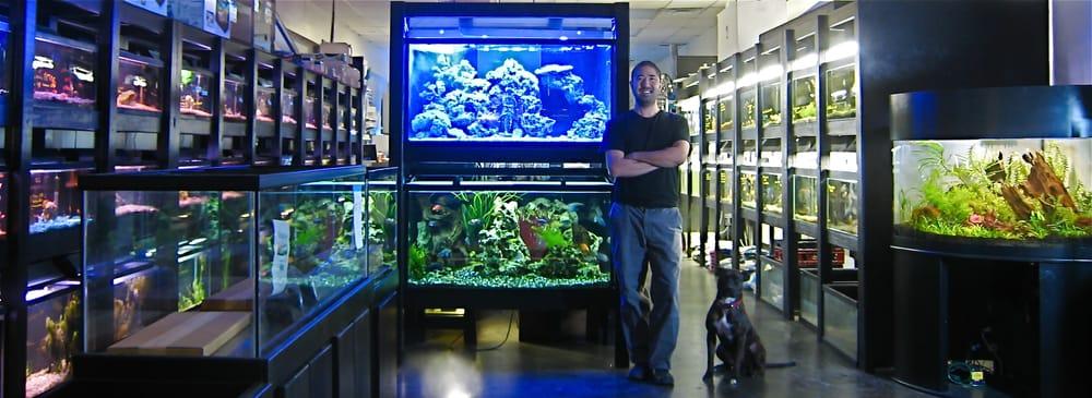 boutique aquarium