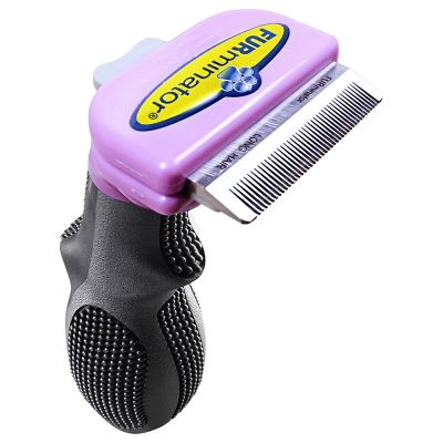 brosse chat poil court