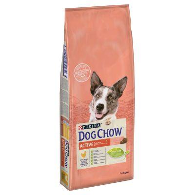 dog chow active