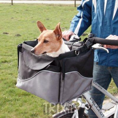 panier transport chien velo
