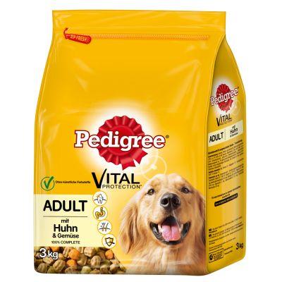 pedigree chien