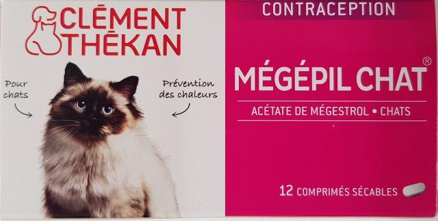 pilule contraceptive chat
