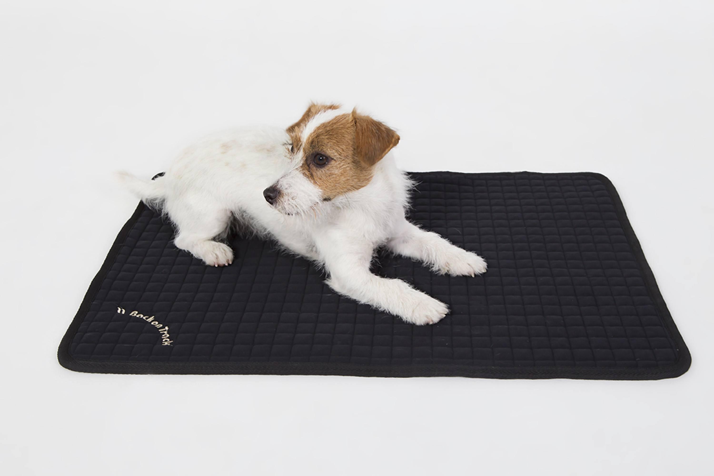 tapis grand chien