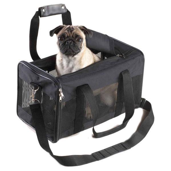 transport chien